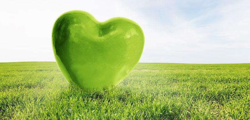 10 egyszerű tipp a Föld védelméért
