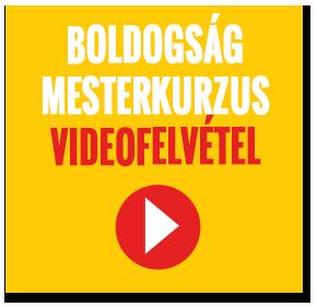 videofelvetel