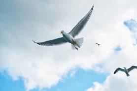 13 ok, amiért neked is fontos, hogy megbocsáss